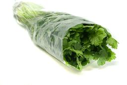 Fruver Culantro