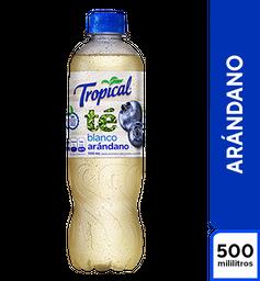 Tropical Té Blanco Arandano 500 ml